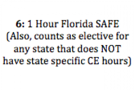 **7293 1 Hour Florida SAFE: Requirements and Expectations (2017 CE)**