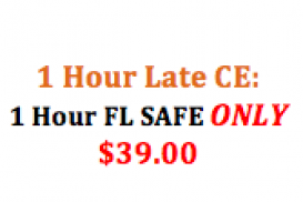 Late CE: (10372) 1 Hour FL SAFE: Mortgage Regs Explained (10071)