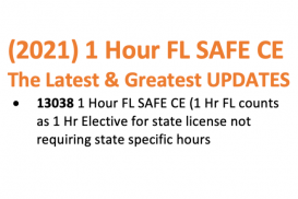 (13038) 1 Hour Florida SAFE: The Latest & Greatest UPDATES